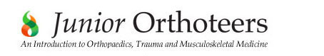 Junior Orthoteers
